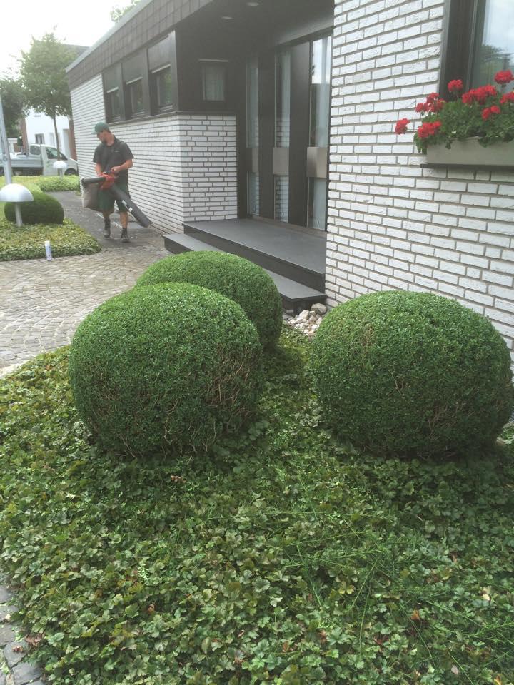 Impressionen_Garten_Gruen_Design_18
