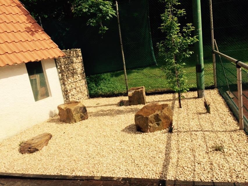 Impressionen_Garten_Gruen_Design_12