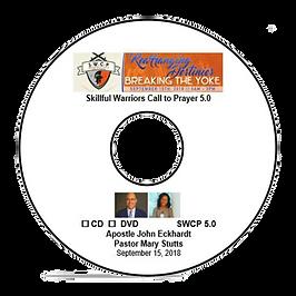 CD-DVD-2018.png