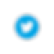 TWITTER_ICON_400px_edited.png