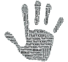 SCfeature-trafficking-removebg-preview.p