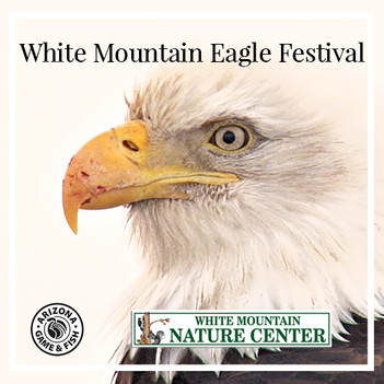 Event 1 WM Eagles Fest.jpg