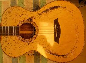 Koa phi guitar top plate Chladni pattern monopole at 172 Hz