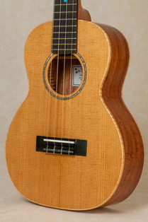 Torrefied Sitka Spruce Top
