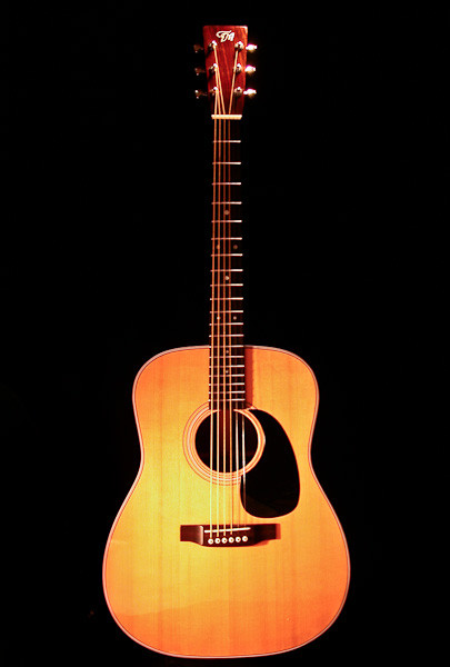 Dreadnaught guitar made from Martin kit