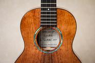 Tenor ukulele rosette in abalone