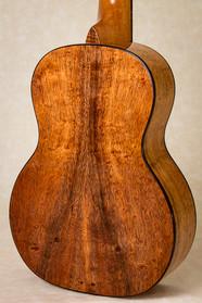 Body of curly koa tenor ukulele