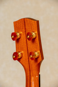 Gotoh geared tuners