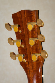 Rosewood guitar with five piece neck