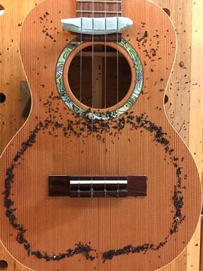 Tenor ukulele Chladni pattern, monopole at 360 Hz