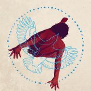 Dance of the Bowerbird