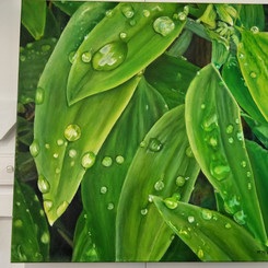 Megan Medwell  I just need Green 60x60cm Oil on canvas  $600