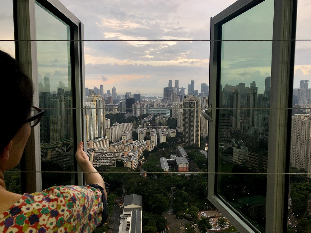 The view from Ms Carrie Ng's flat at City Vue. Photo: Wong Pei Ting/TODAY