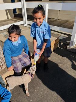 Foketi feeding the lamb
