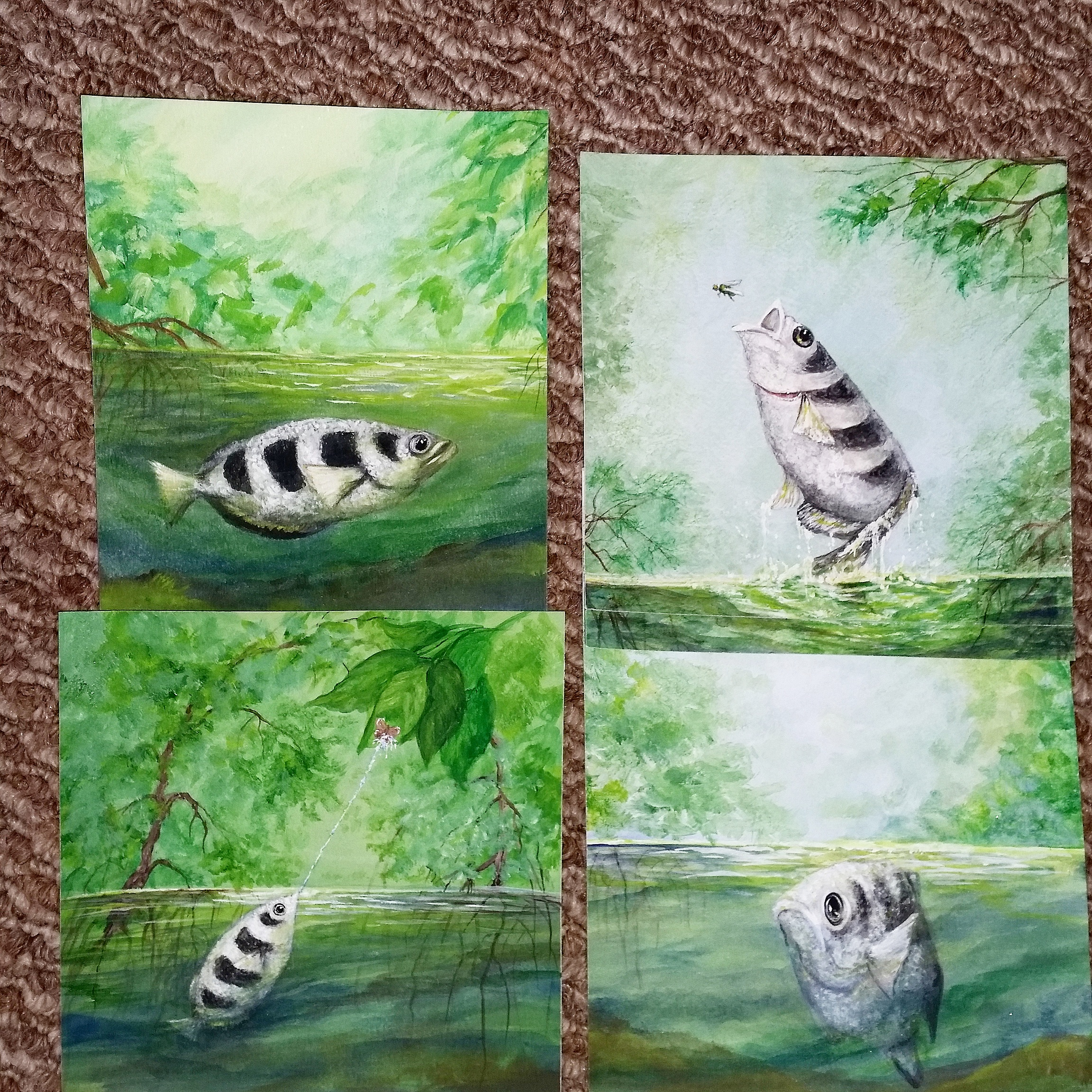 illustrations for archerfish