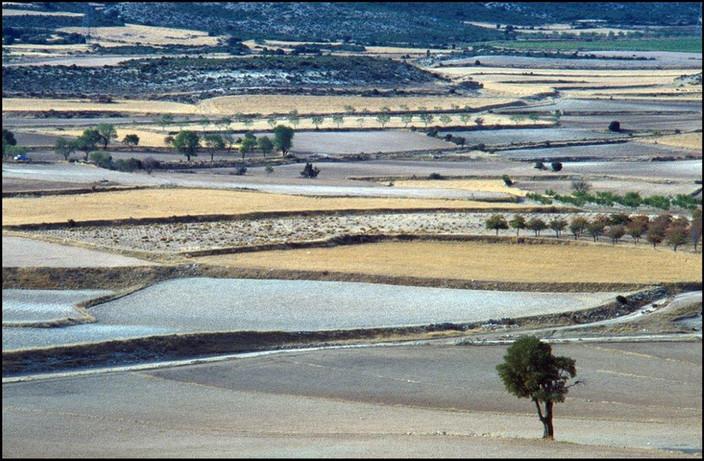 spaans-landschap.jpg