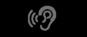 łowców dźwięków