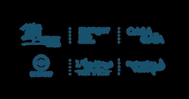 logos FIN-01.png