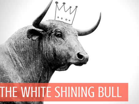 Because You Need a White Shining Bull