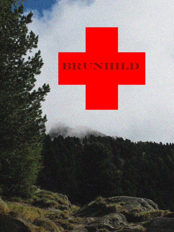 'Brunhild', digital photocollage, 2020