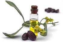 organic_golden_jojoba_oil_1.jpg