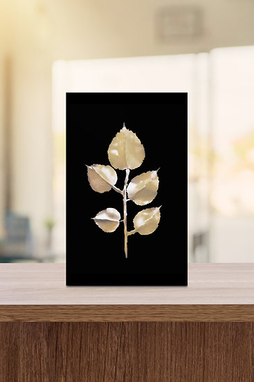ROSE LEAVES (BLACK, 2020)