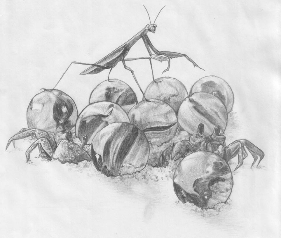 Fable Illustration 04, graphite pencil