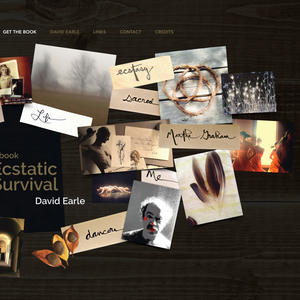 David Earle Ecstatic Survival