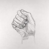 Male Hand Study