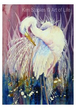 Egret_Spirit_bird