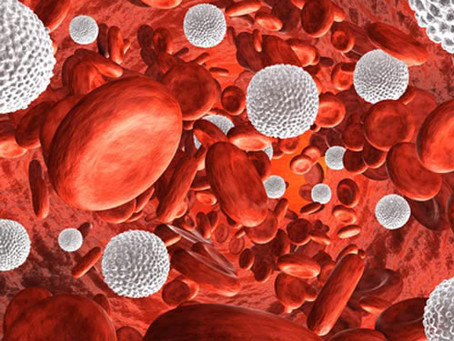 Potential Strategy for Acute Myeloid Leukemia Therapy Identified