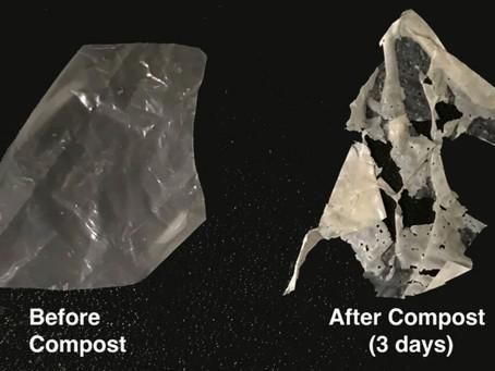 Scientists unveil process that makes biodegradable plastics truly compostable