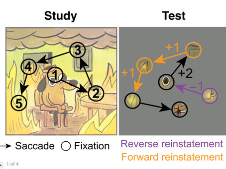 Rapid coordination of effective learning by the human hippocampus
