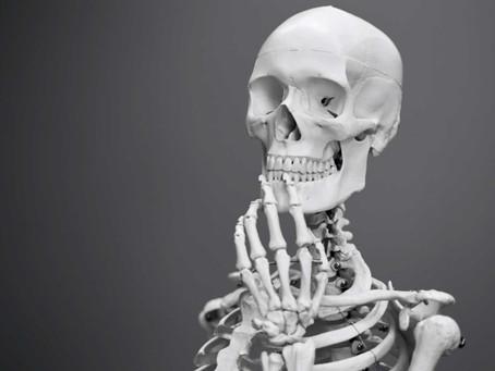 New Bone Cell Type Identified