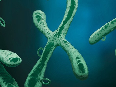 Cancer May Be Driven by DNA Outside of Chromosomes