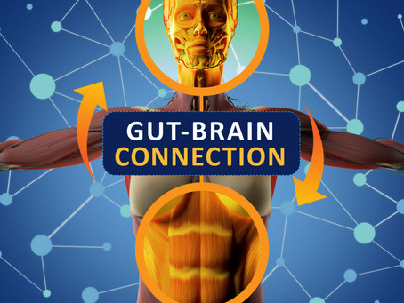 Gut Microbiome May Provide Novel Therapies for Neurological Disorders