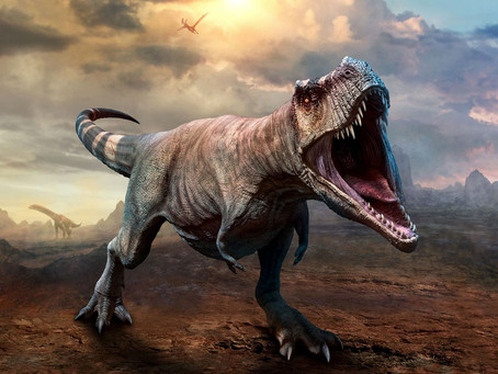 Absolute abundance and preservation rate of Tyrannosaurus rex