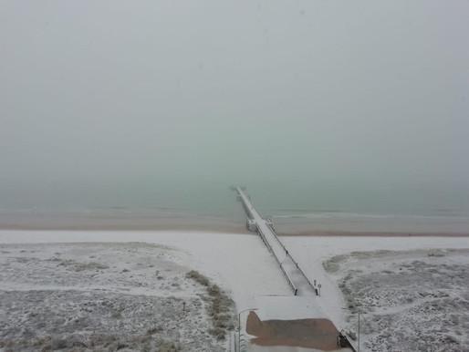VIDÉOS : la neige vient de faire son apparition en Vendée !