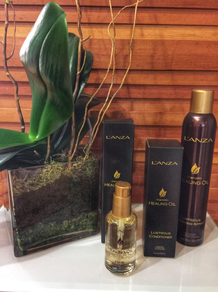 Keratin Healing Oil by L'ANZA healing haircare
