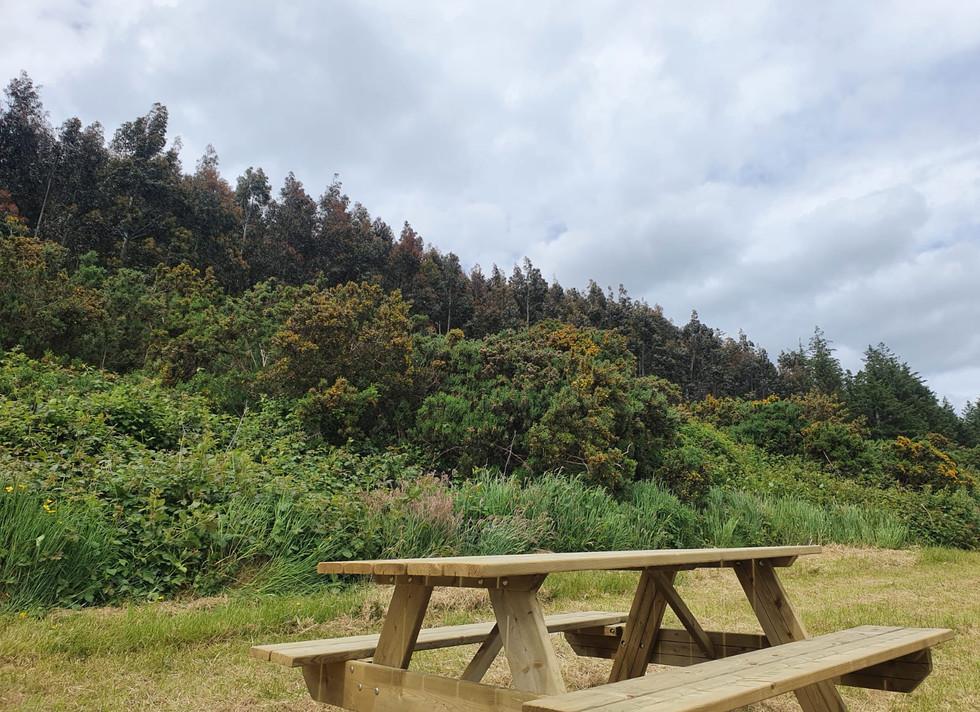Tara Hill Estate Picnic Spot