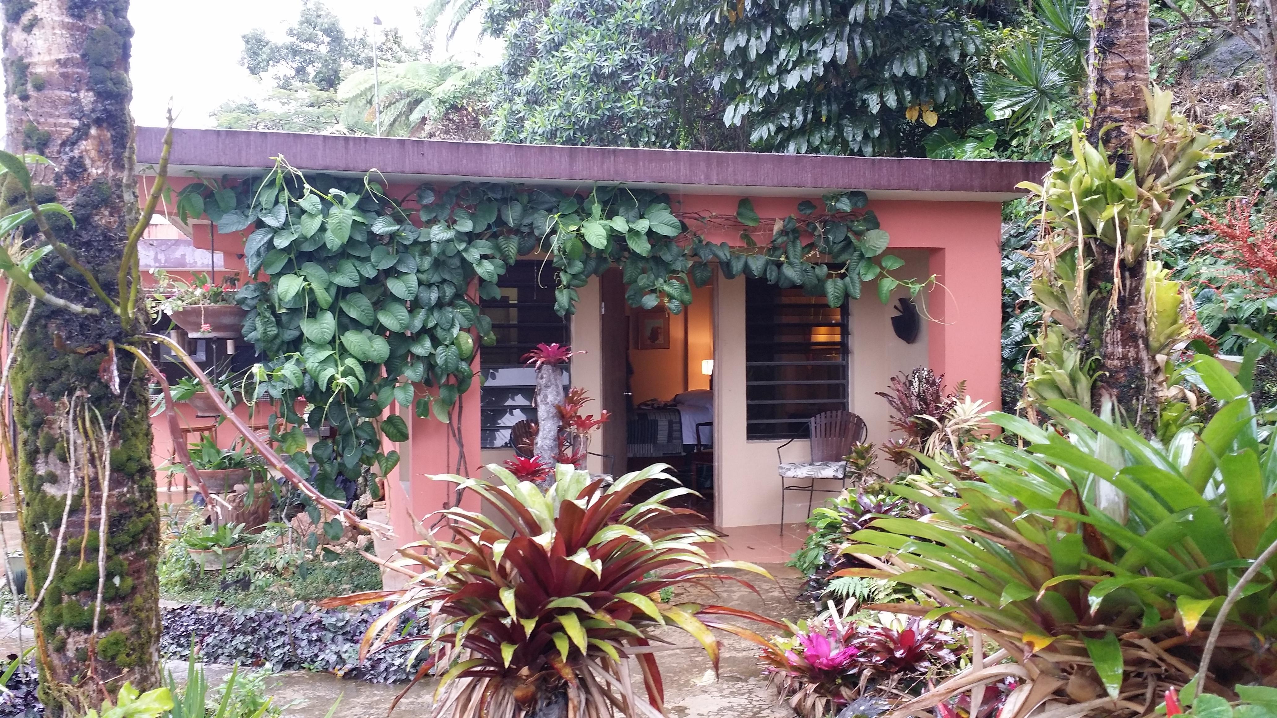 puerto rico 2015 | momsapronstrings