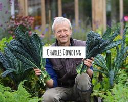 charles-dowding-banner-1-min_edited_edit