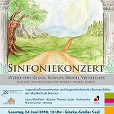 180624 Sommerkonzert.jpg