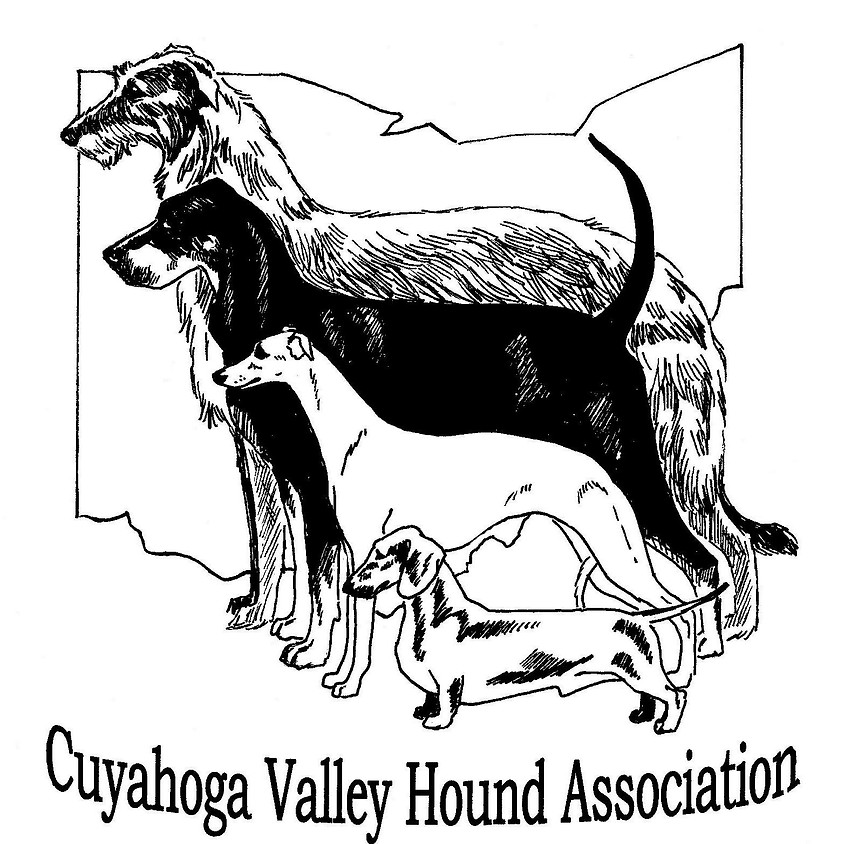 Lure Coursing with the Ohio Friendship Cluster
