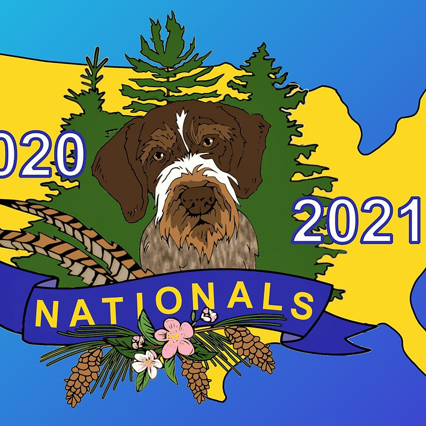 German Wirehaired Pointer Club of America 2020 & 2021 National Shows.