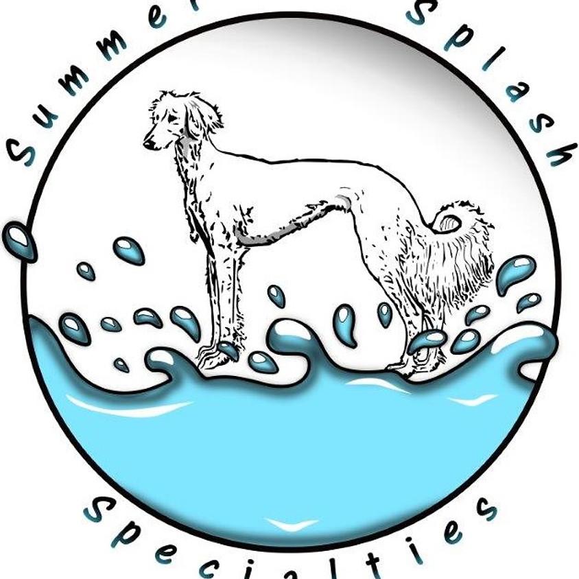 Saluki Summer Splash