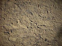 footprints-filtered.jpg