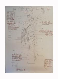 """plan """"Clinic"""" Paul du Moulin 2008.jpg"""