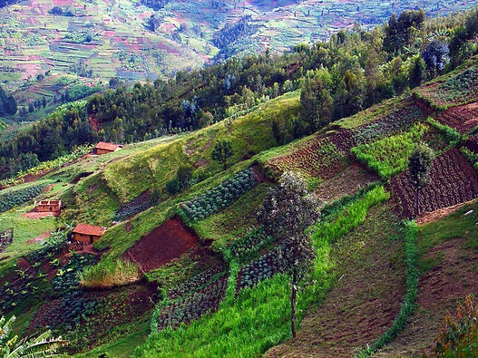 Hill-Side-Farming-in-Africa.jpg