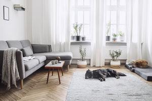 Plan De Maison Interieur Comment Meubler Et Decorer Un